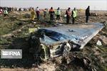 Iran khẳng định sẽ làm rõ những nghi vấn liên quan sự cố bắn rơi máy bay của Ukraine