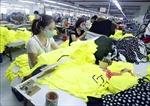 Việt Nam mang đến nhiều cơ hội đầu tư cho các doanh nghiệp Ấn Độ