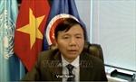 Việt Nam đánh giá cao và ủng hộ hoạt động của Phái bộ gìn giữ hòa bình tại Nam Sudan