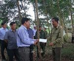 Cà Mau tập trung mọi nguồn lực giữ cho rừng tràm U Minh Hạ an toàn bước qua mùa khô hạn