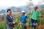 Giàng Seo Châu - tài năng trẻ tiêu biểu ở vùng cao Lào Cai