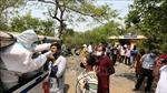 Ấn Độ phát hiện biến thể nguy hiểm mới của virus SARS-CoV-2 với 3 đột biến