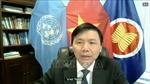 Việt Nam kêu gọi các bên tăng cường hợp tác, sớm chấm dứt xung đột tại Yemen