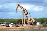 Giá dầu thế giới tăng tuần thứ tư liên tiếp