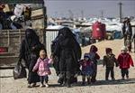 Hàng triệu người dân Syria cần được viện trợ nhân đạo