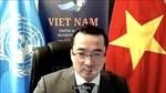 HĐBA thảo luận về vấn đề chiến binh nước ngoài và lính đánh thuê tại Libya
