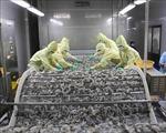 Xuất khẩu tôm của Cà Mau vẫn tăng gần 17%