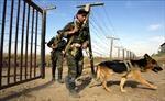 Tajikistan lần đầu diễn tập kiểm tra năng lực sẵn sàng chiến đấu quy mô lớn
