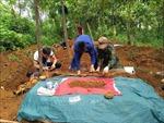 Chuyện về những chiến sỹ đi tìm hài cốt đồng đội trên đất bạn Lào