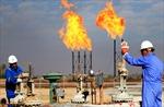 Thị trường năng lượng ghi nhận chuỗi tuần tăng giá ấn tượng