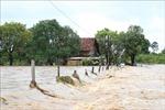 Các tỉnh, thành phố cần chủ động ứng phó với mưa lũ