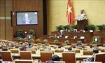 Sửa đổi, bổ sung Luật Sở hữu trí tuệ đáp ứng yêu cầu phát triển đất nước