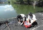 Đồng Nai: Xử lý các trường hợp vi phạm gây ảnh hưởng đến môi trường