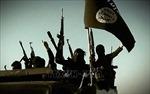 IS sát hại 11 dân thường ở Iraq