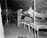 Cuộc chiến của Lục quân Mỹ với bệnh sốt rét trong Thế chiến II - Kỳ cuối