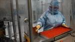 Cuba sắp đạt thành tựu khoa học phi thường về vaccine COVID-19