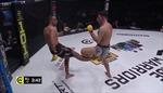 Võ sĩ võ tổng hợp gãy gập chân vì đá đối thủ