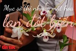 Mục sở thị những mặt hoa lan đột biến khiến thị trường hoa 'điên đảo'