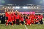 Góc nhìn chuyên gia: 'Tuyển Việt Nam cần và sẽ vô địch AFF Cup 2020'