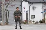 Mỹ phản đối Triều Tiên – Hàn Quốc lập vùng cấm bay trên biên giới