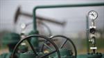 Không phải OPEC, Trung Quốc mới có quyền lực lay chuyển thị trường dầu mỏ