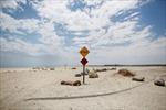 Trái đất ấm lên khiến 83 triệu người có nguy cơ chết vì nhiệt độ cao