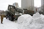 Nhật Bản lao đaovì lượngtuyết rơi thấp nhất lịch sử