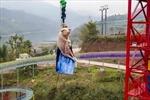 Công viên thả lợn từ độ cao 70 mét để mua vui gây phẫn nộ