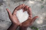 Hàn Quốc muốn thay thế gạo Nhật Bản giữa căng thẳng thương mại