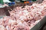 Trung Quốc phát hiện virus SARS-CoV-2 trên cánh gà đông lạnh nhập khẩu từ Brazil