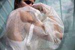 Quần áo bằng 'vải sống' có thể quang hợp, lọc sạch không khí