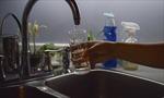 Thành phố Mỹ cảnh báo nước máy nhiễm vi khuẩn ăn não