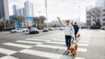 Chó dẫn đường cho người khiếm thị tại Trung Quốc hiếm hơn cả gấu trúc