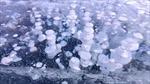 Bong bóng băng hiếm gặp xuất hiện tuyệt đẹp trên mặt hồ Trung Quốc