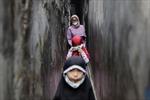 Nguyên nhân tỉ lệ trẻ em tử vong vì COVID-19 ở Indonesia cao nhất thế giới