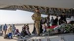 Mạng sống của trên 250 phiên dịch viên Afghanistan bị đe doạ vì sự cố lộ dữ liệu