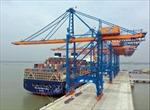 Quy hoạch cảng biển đi trước một bước