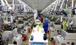 Năm 2019, tập trung phát triển công nghiệp chế biến, chế tạo