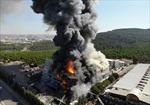 Thổ Nhĩ Kỳ: Nhà máy hóa chất bị nhấn chìm trong ngọn lửa