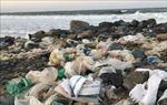 Bảo tồn biển Việt Nam: Bài 1 – Thực trạng và những vấn đề cấp bách