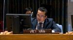 Việt Nam đề cao việc tìm kiếm giải pháp hoà bình lâu dài cho Kosovo