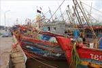 Thái Bình, Thanh Hóa chủ động ứng phó với cơn bão số 2