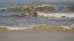 Quảng Ngãi: Xử lý nước biển ven bờ có màu bất thường tại khu vực xã Bình Thạnh