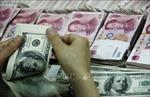 Tỷ giá trung tâm tăng 3 đồng, giá NDT biến động nhẹ