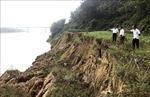Báo động tình trạng sạt lở ven sông Lô