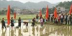 Lễ hội Lồng Tồng – Nét đẹp văn hóa của người dân vùng cao Hà Giang