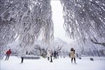 Tuyết rơi đầu đông tuyệt đẹp tại Trung Quốc
