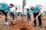 Hành trình 'Một triệu cây xanh, thêm cây thêm sự sống' đến với Khu di tích lịch sử K9 Đá Chông – Ba Vì