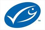 Marine Stewardship Council hợp tác với các đầu bếp nổi tiếng công bố cuốn sách nấu ăn hải sản bền vững