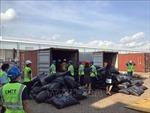 Phát hiện hơn 5 tấn vảy sừng tê tê trong 2 container tại cảng Cái Mép